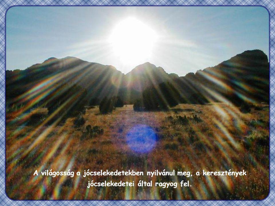 """""""Ugyanígy a ti világosságotok is világítson az embereknek, hogy jótetteiteket látva dicsőítsék mennyei Atyátokat. (Mt 5,16)"""