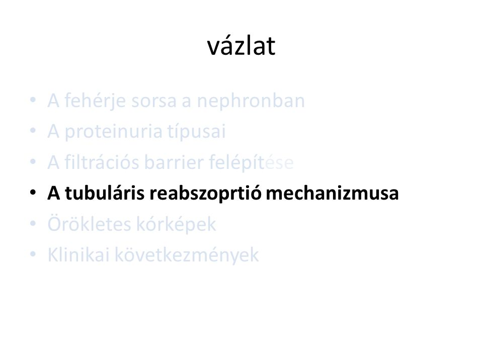 vázlat • A fehérje sorsa a nephronban • A proteinuria típusai • A filtrációs barrier felépítése • A tubuláris reabszoprtió mechanizmusa • Örökletes kó