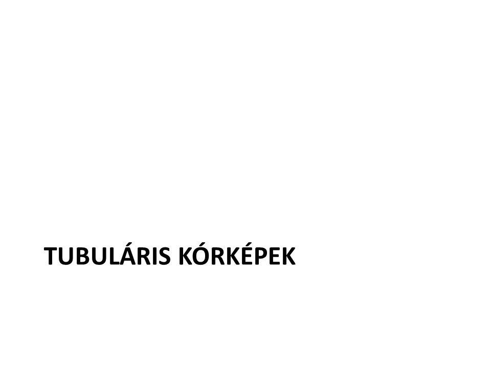 TUBULÁRIS KÓRKÉPEK