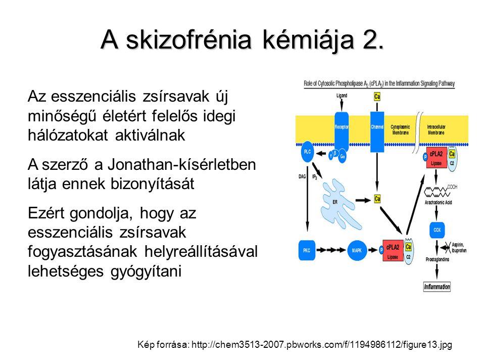Kép forrása: http://chem3513-2007.pbworks.com/f/1194986112/figure13.jpg Az esszenciális zsírsavak új minőségű életért felelős idegi hálózatokat aktivá