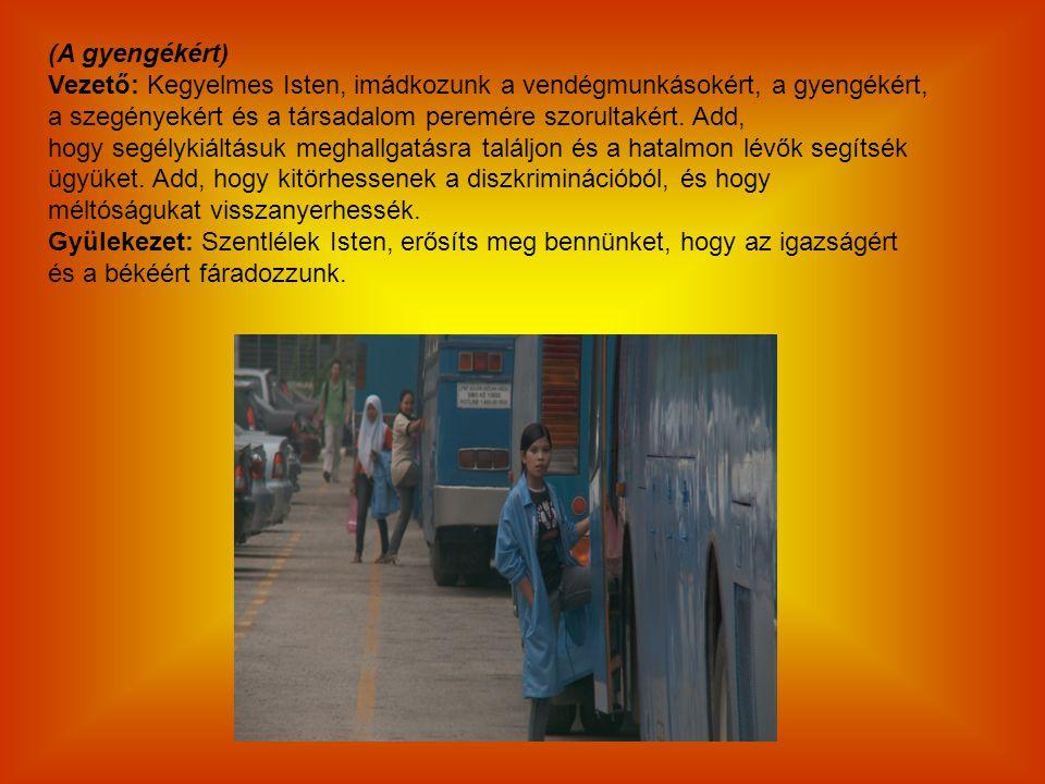 (A gyengékért) Vezető: Kegyelmes Isten, imádkozunk a vendégmunkásokért, a gyengékért, a szegényekért és a társadalom peremére szorultakért. Add, hogy