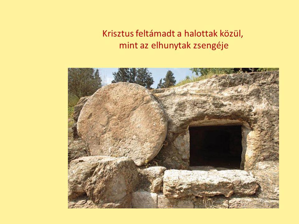 Krisztus feltámadt a halottak közül, mint az elhunytak zsengéje