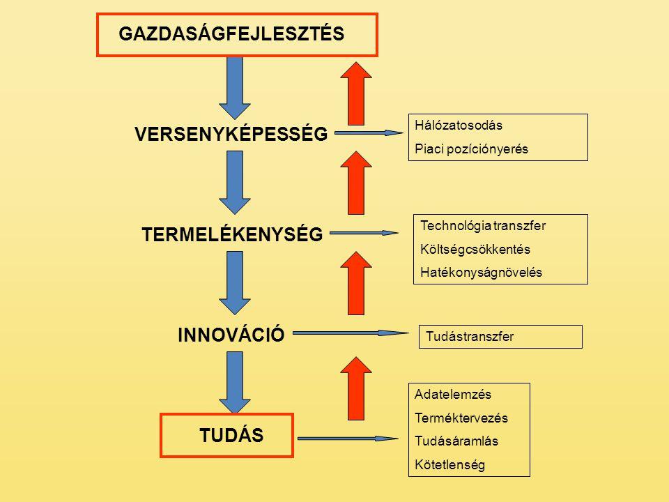 GAZDASÁGFEJLESZTÉS VERSENYKÉPESSÉG TERMELÉKENYSÉG INNOVÁCIÓ TUDÁS Adatelemzés Terméktervezés Tudásáramlás Kötetlenség Tudástranszfer Technológia transzfer Költségcsökkentés Hatékonyságnövelés Hálózatosodás Piaci pozíciónyerés