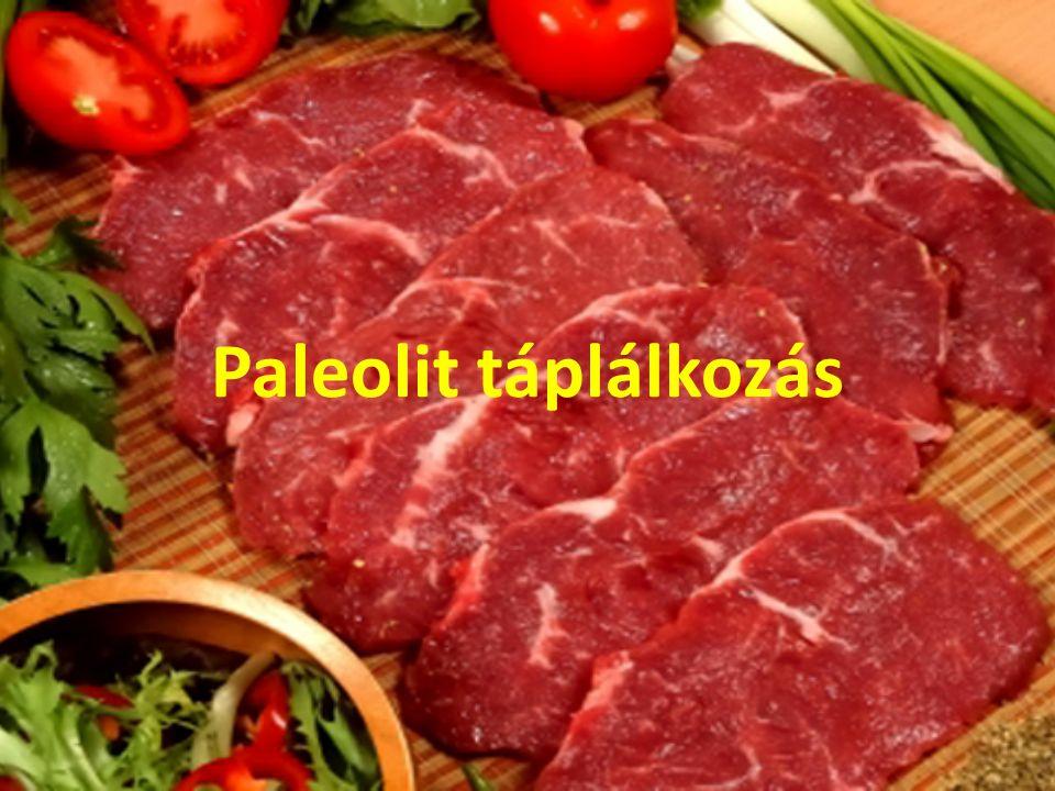 A paleolit táplálkozás egy étrend, amely az irányzat képviselői által tudományosnak tartott, de az autentikus tudomány által nem igazolt kutatásokkal rekonstruálta a paleolitikumban élő ősemberek és a ma élő környezeti népek táplálkozását és életmódját.