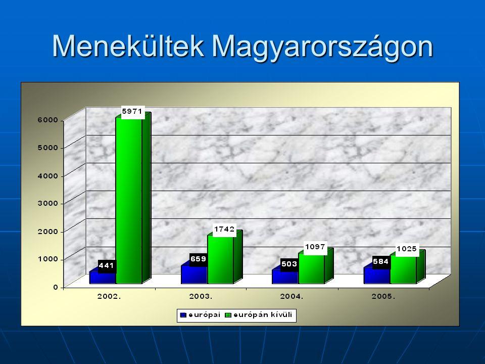 Ügyfeleink demográfiai jellemzői Korcsop.Férfi%Nő%Össz.% 0-4337229558 5-176615572312317 18-59354781696852375 60-213 Össz.455100249100704100