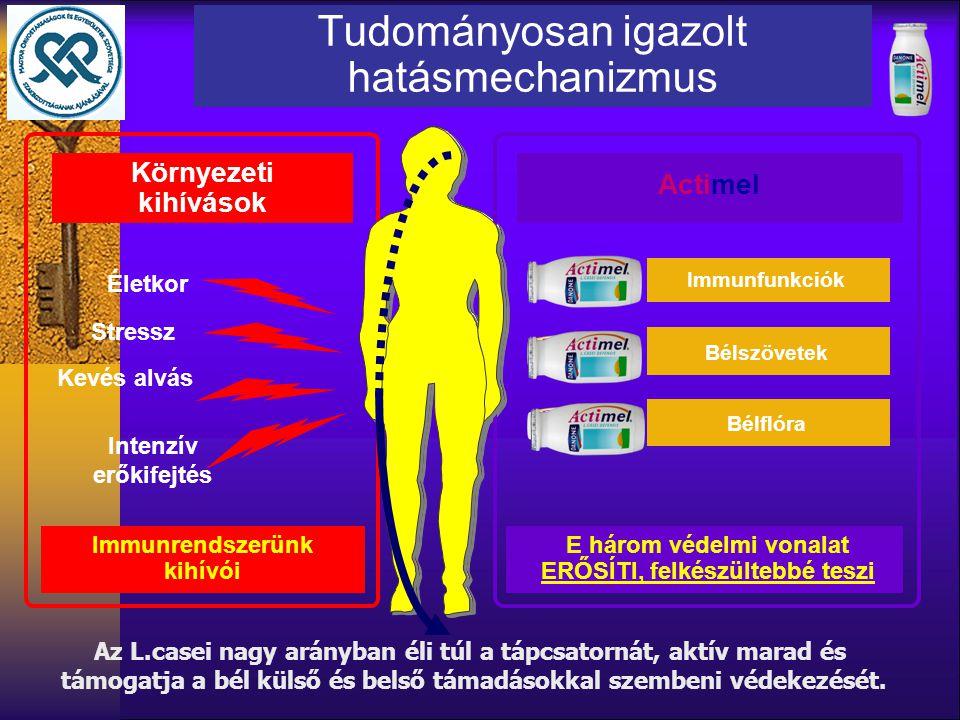 Stressz Kevés alvás Intenzív erőkifejtés Életkor Környezeti kihívások Immunrendszerünk kihívói Immunfunkciók Bélszövetek Bélflóra Actimel E három véde
