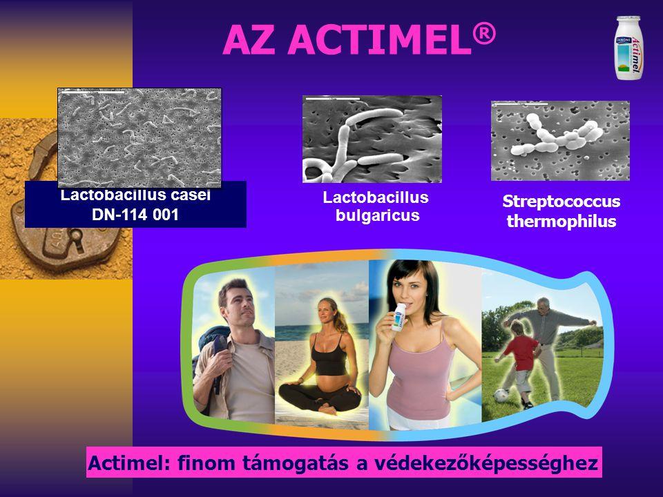 Az immunrendszer Immunitás Vékonybél villusok crypta nyák B T mucosalis szisztémás Baktérium dendritikus sejtek Peyerplakkok M Panethsejtek vér nyirok Bélhám R.Bourdet Mikroflóra Bélflóra Bélnyálka (mucus) + bélfal Az Actimel kölcsönhatásba lép a bél védekező rendszereivel Vastagbél