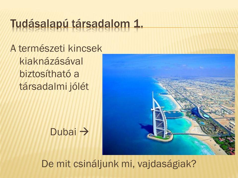 A természeti kincsek kiaknázásával biztosítható a társadalmi jólét Dubai  De mit csináljunk mi, vajdaságiak