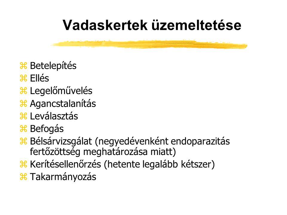 Vadaskertek üzemeltetése zBetelepítés zEllés zLegelőművelés zAgancstalanítás zLeválasztás zBefogás zBélsárvizsgálat (negyedévenként endoparazitás fert