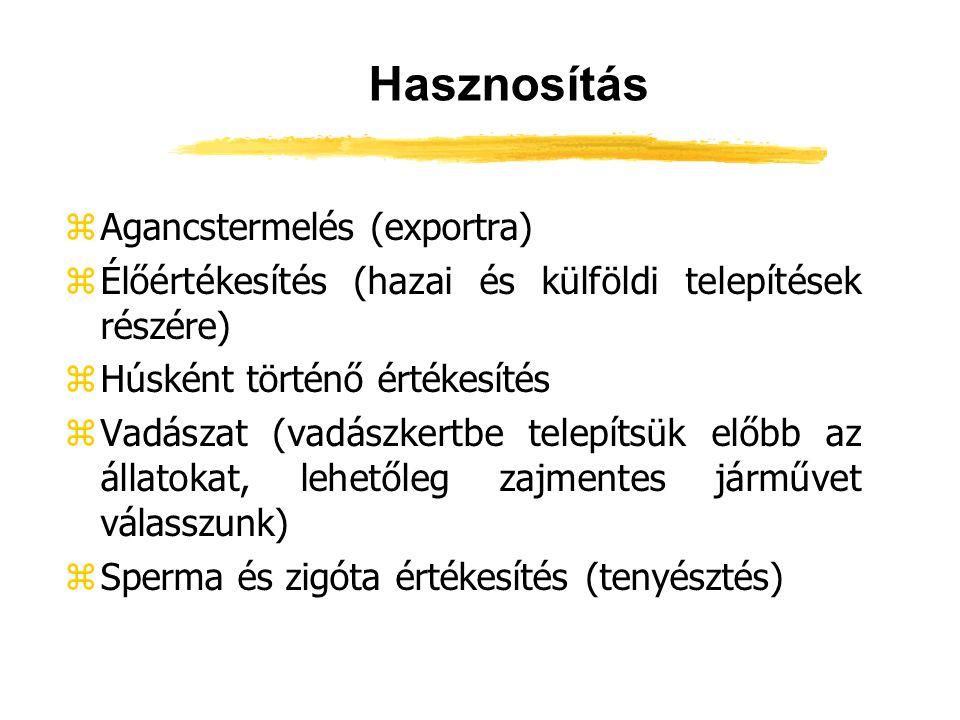 Hasznosítás zAgancstermelés (exportra) zÉlőértékesítés (hazai és külföldi telepítések részére) zHúsként történő értékesítés zVadászat (vadászkertbe te