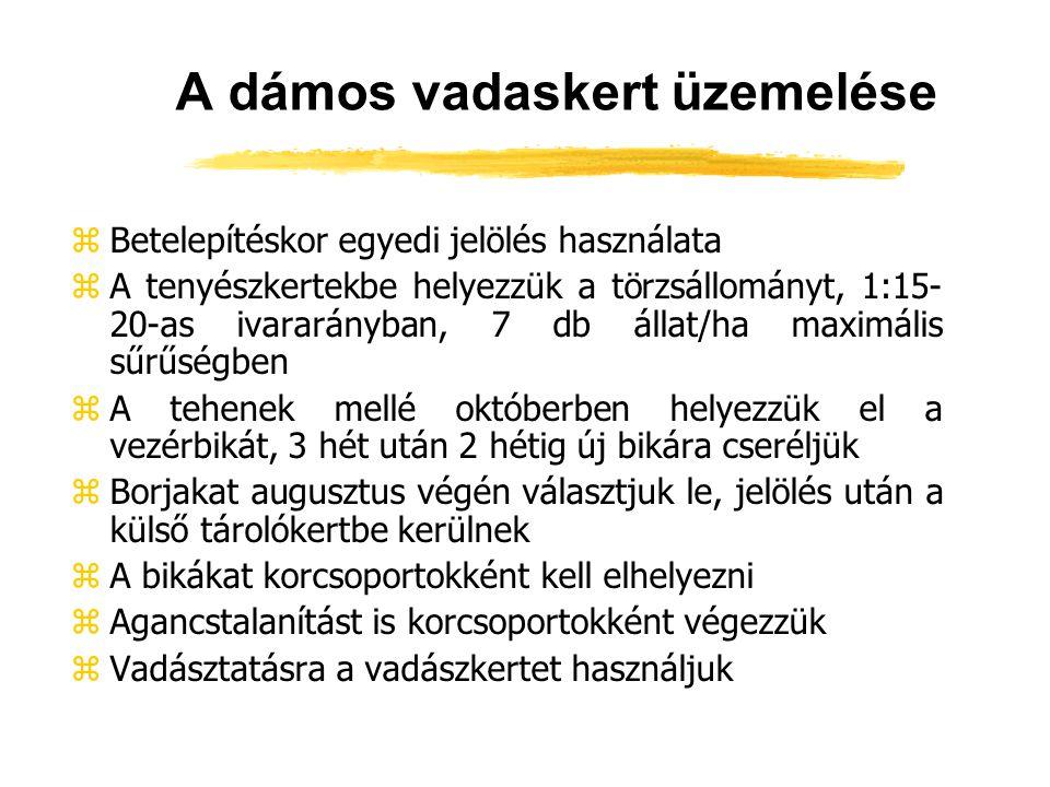 A dámos vadaskert üzemelése zBetelepítéskor egyedi jelölés használata zA tenyészkertekbe helyezzük a törzsállományt, 1:15- 20-as ivararányban, 7 db ál