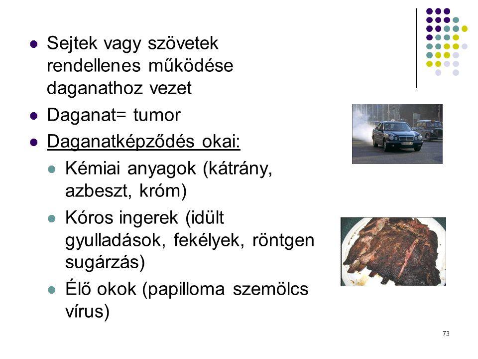73 Sejtek vagy szövetek rendellenes működése daganathoz vezet Daganat= tumor Daganatképződés okai: Kémiai anyagok (kátrány, azbeszt, króm) Kóros inger