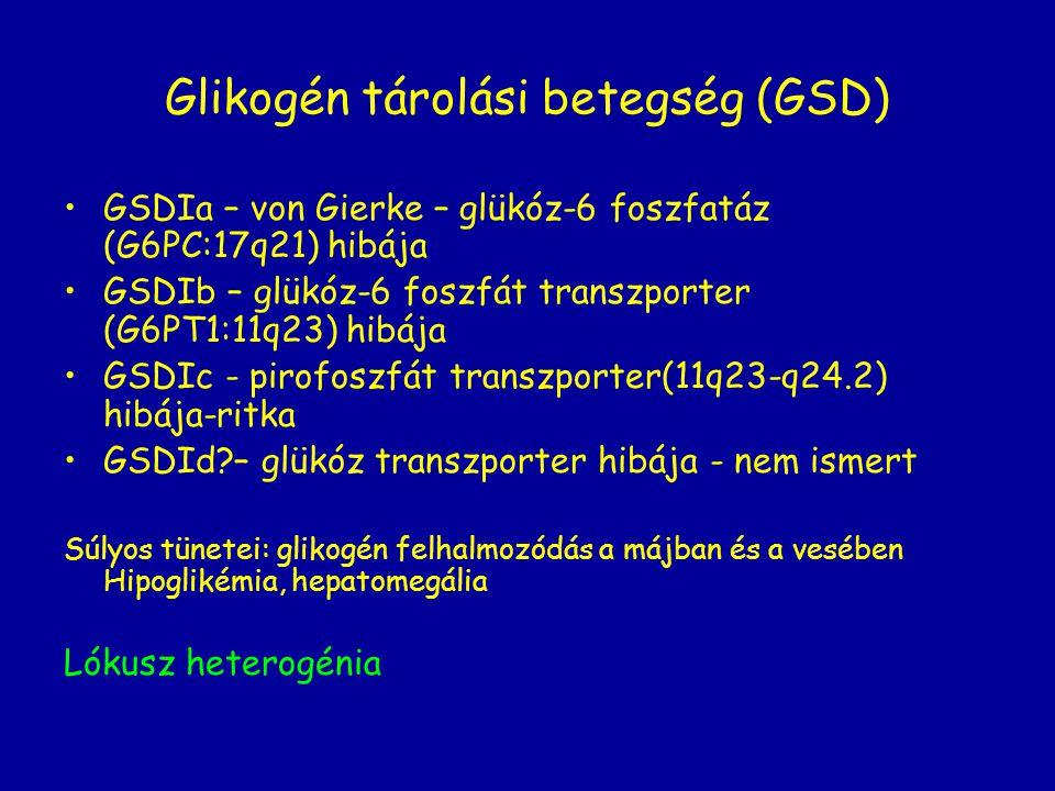 Glikogén tárolási betegség (GSD) GSDIa – von Gierke – glükóz-6 foszfatáz (G6PC:17q21) hibája GSDIb – glükóz-6 foszfát transzporter (G6PT1:11q23) hibáj