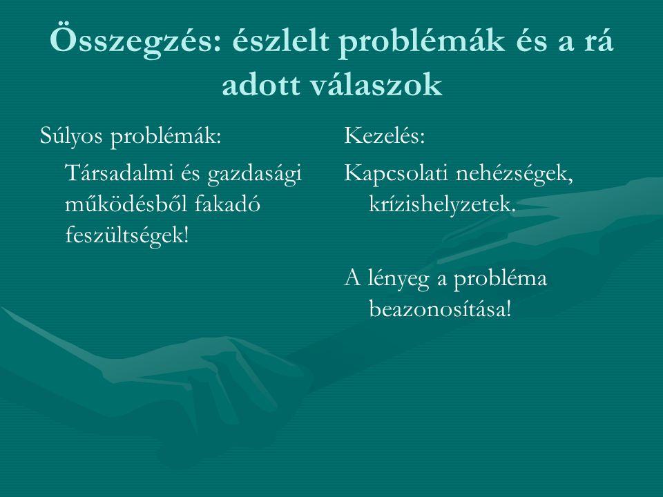 Összegzés: észlelt problémák és a rá adott válaszok Súlyos problémák: Társadalmi és gazdasági működésből fakadó feszültségek.
