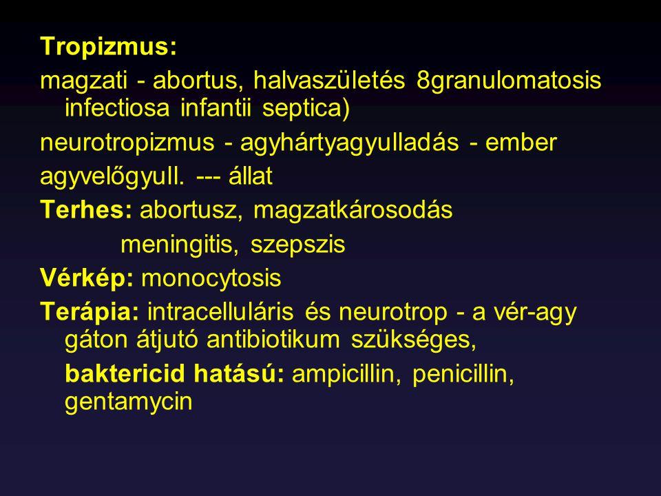 Tropizmus: magzati - abortus, halvaszületés 8granulomatosis infectiosa infantii septica) neurotropizmus - agyhártyagyulladás - ember agyvelőgyull. ---