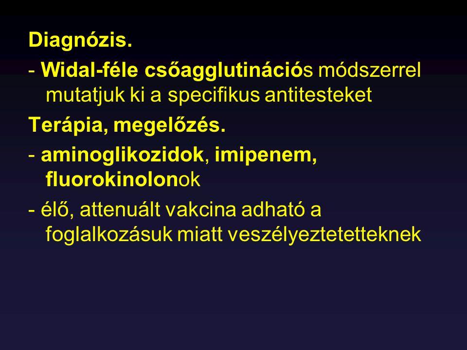 Diagnózis. - Widal-féle csőagglutinációs módszerrel mutatjuk ki a specifikus antitesteket Terápia, megelőzés. - aminoglikozidok, imipenem, fluorokinol