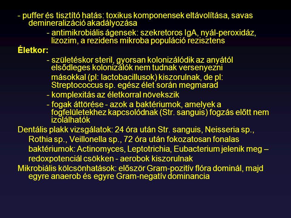 Listeria monocytogenes Természetes élőhely: környezetben mindenütt, házi és vadállatok gastrointestinális traktusban Morfológia: - nem spóraképző, peritrich csillós pálca - 1-45  C-on növekszik - 37  C-on nem mozog, szobahőn igen - natív cseppekben bukfencező mozgás - félfolyékony táptalajba szúrva esernyő alakban nő