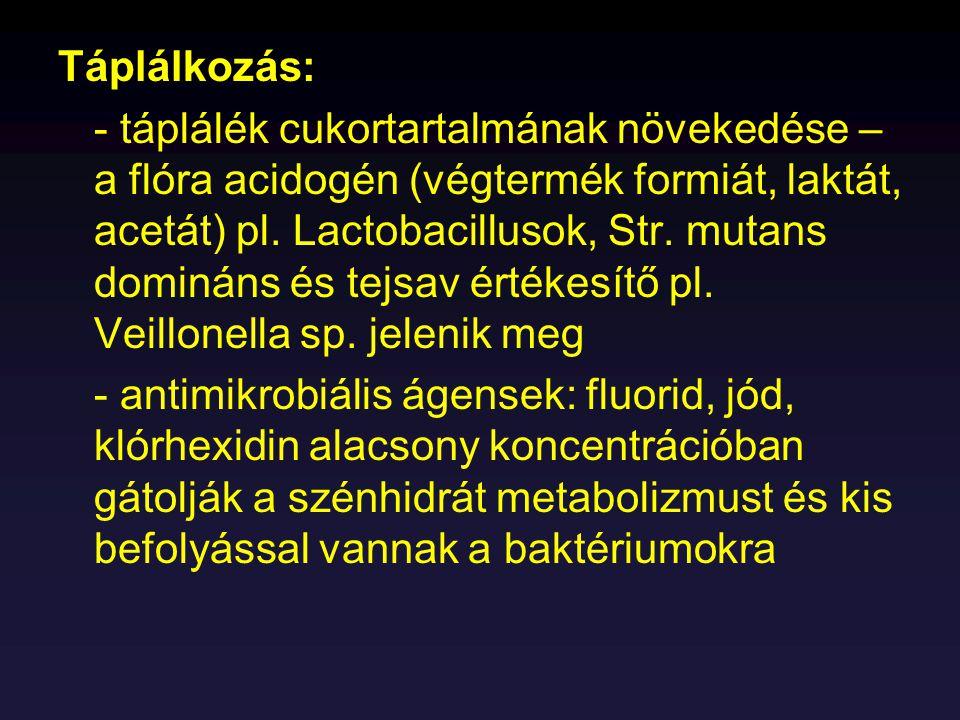 Száj és torok képletekInfekciót okozók: rezidens flórája: Actinobacillus- Vírusok Actinomyces- Str.