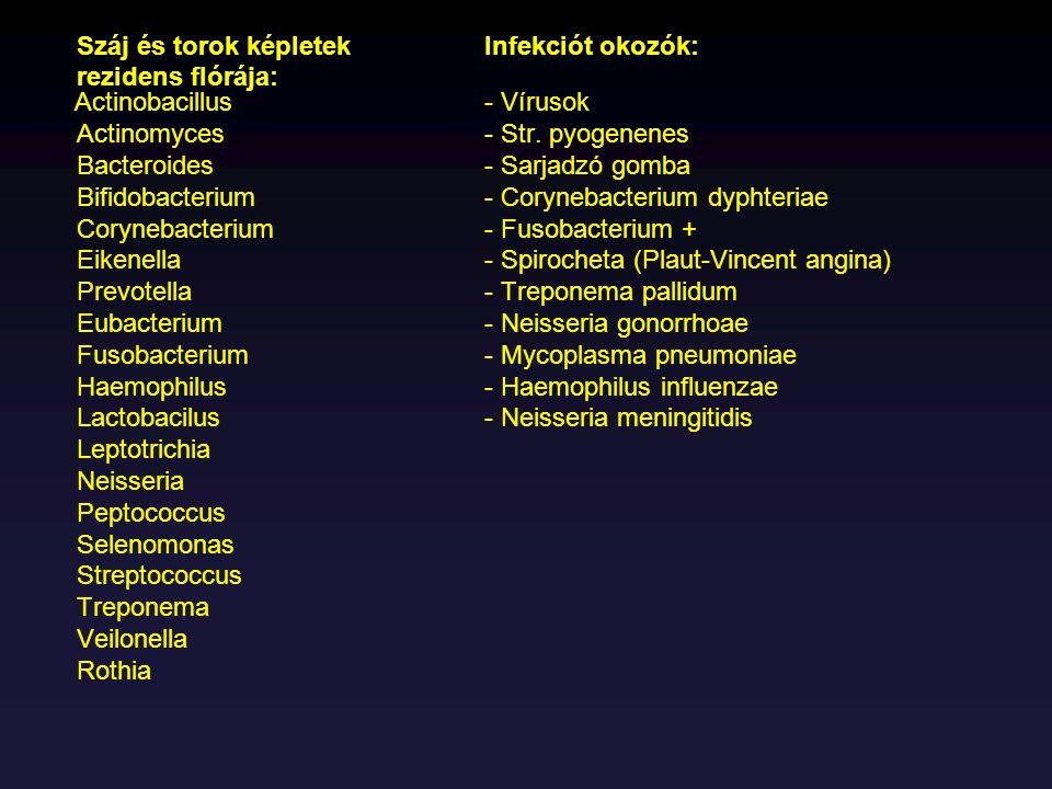 Száj és torok képletekInfekciót okozók: rezidens flórája: Actinobacillus- Vírusok Actinomyces- Str. pyogenenes Bacteroides- Sarjadzó gomba Bifidobacte