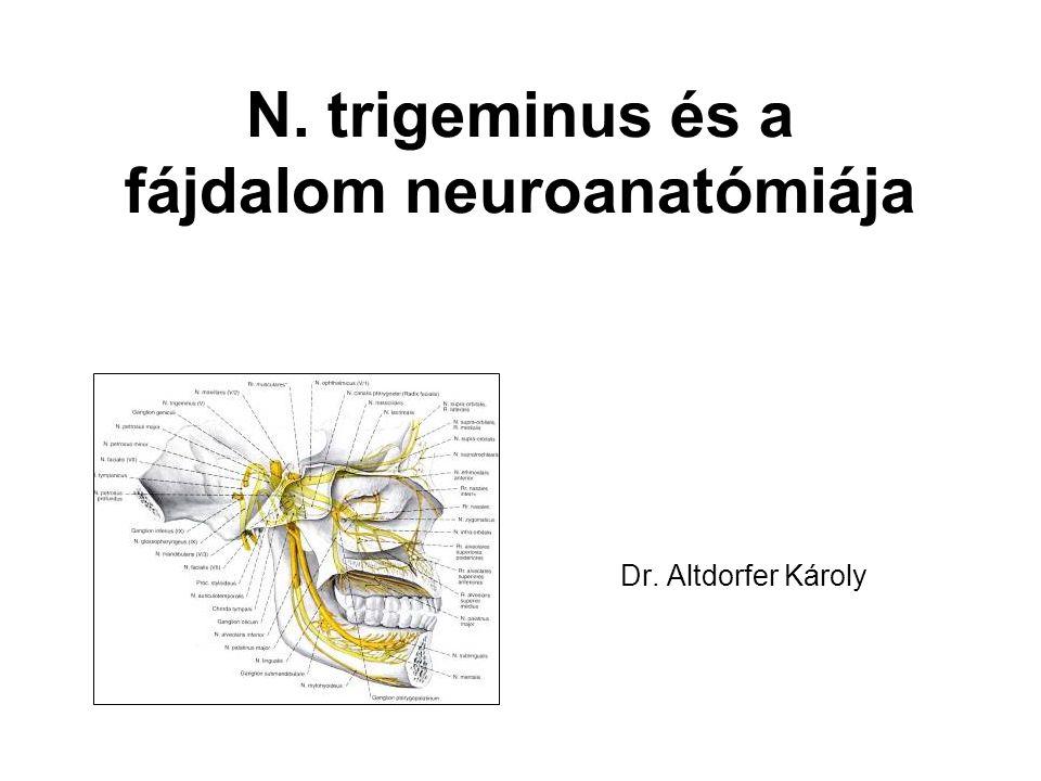 N. trigeminus és a fájdalom neuroanatómiája Dr. Altdorfer Károly