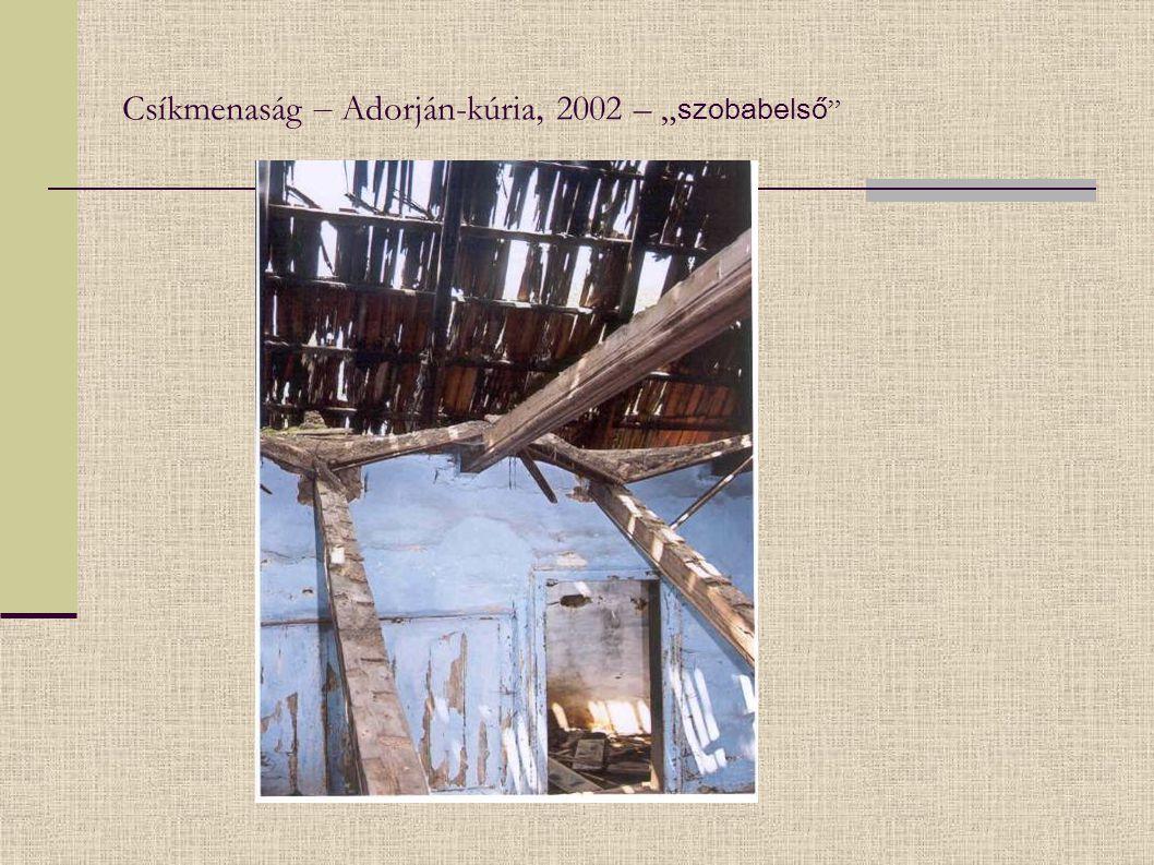 """Csíkmenaság – Adorján-kúria, 2002 – """" szobabelső"""