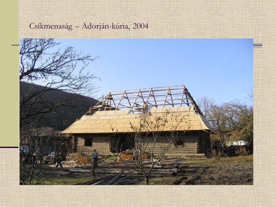 Csíkmenaság – Adorján-kúria, 2004