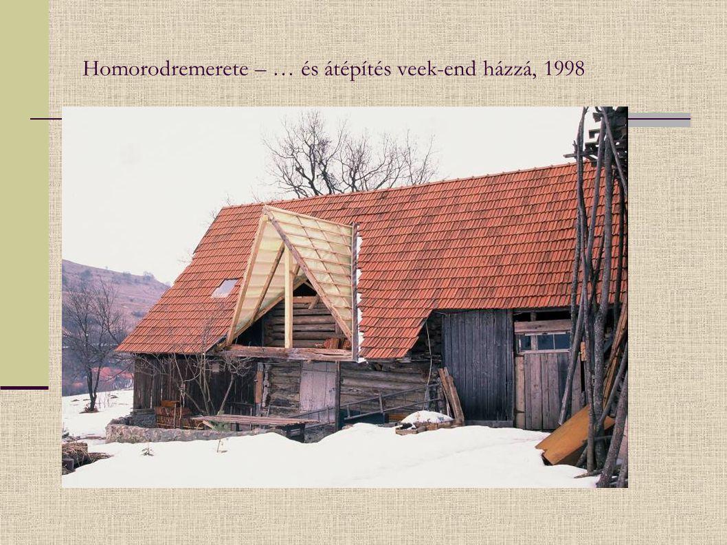 Borszék – Babám villa, 1980-as évek