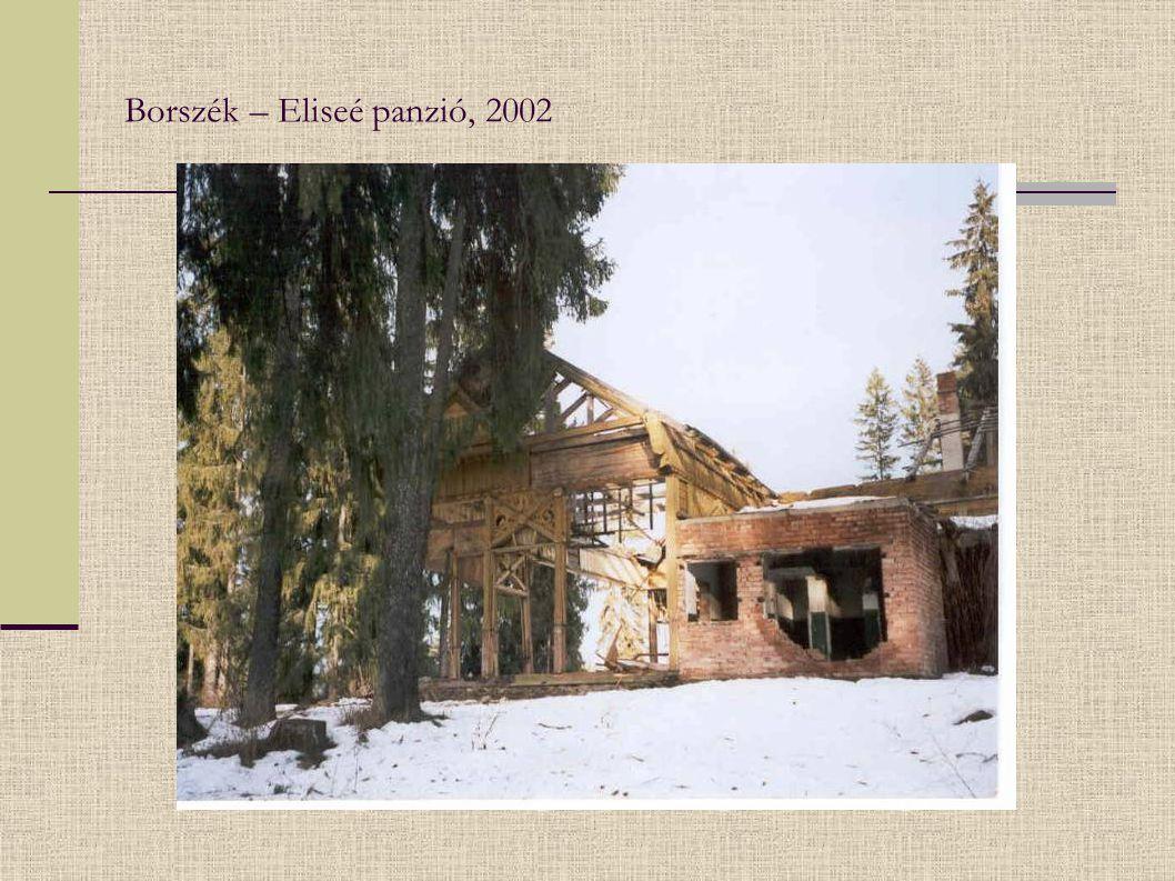 Borszék – Eliseé panzió, 2002