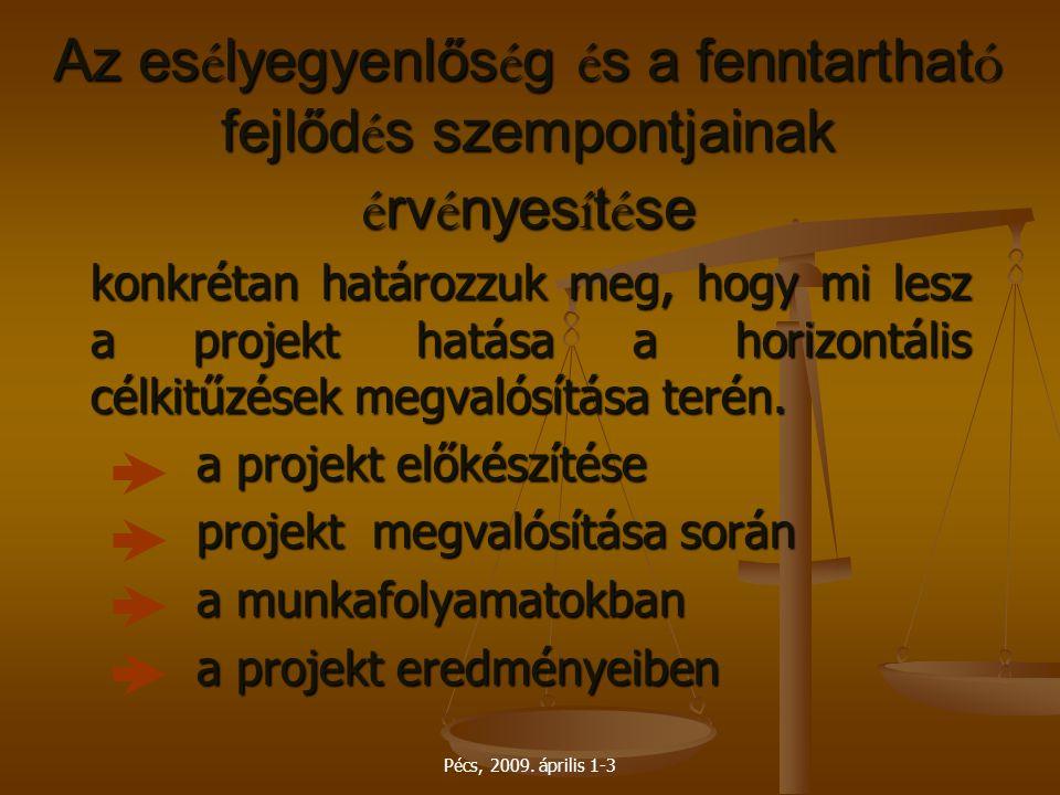 Pécs, 2009. április 1-3 Az es é lyegyenlős é g é s a fenntarthat ó fejlőd é s szempontjainak é rv é nyes í t é se konkrétan határozzuk meg, hogy mi le
