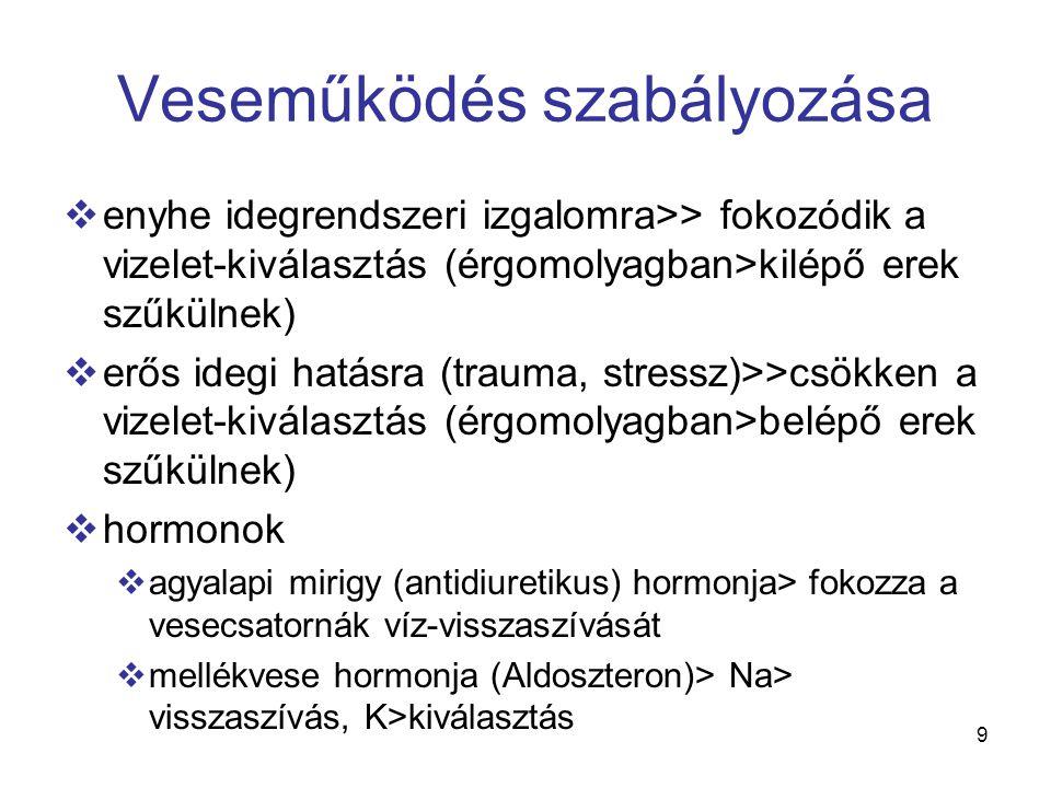 9 Veseműködés szabályozása  enyhe idegrendszeri izgalomra>> fokozódik a vizelet-kiválasztás (érgomolyagban>kilépő erek szűkülnek)  erős idegi hatásra (trauma, stressz)>>csökken a vizelet-kiválasztás (érgomolyagban>belépő erek szűkülnek)  hormonok  agyalapi mirigy (antidiuretikus) hormonja> fokozza a vesecsatornák víz-visszaszívását  mellékvese hormonja (Aldoszteron)> Na> visszaszívás, K>kiválasztás