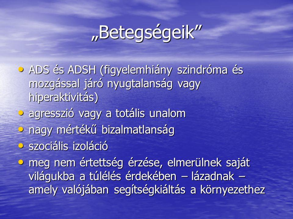"""""""Betegségeik"""" ADS és ADSH (figyelemhiány szindróma és mozgással járó nyugtalanság vagy hiperaktivitás) ADS és ADSH (figyelemhiány szindróma és mozgáss"""
