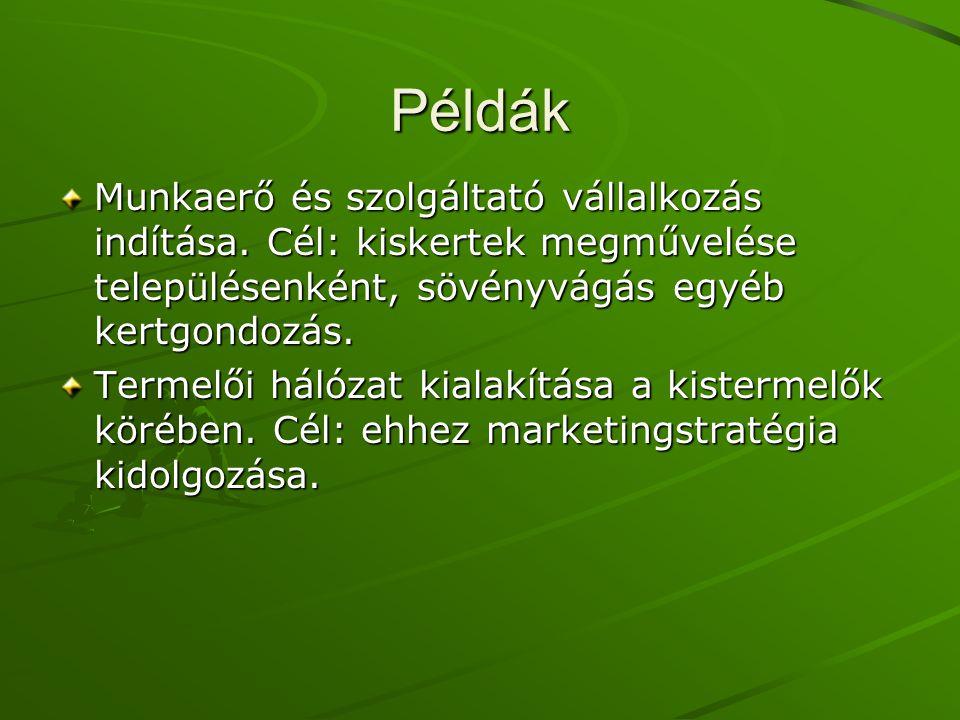 Példák Munkaerő és szolgáltató vállalkozás indítása.