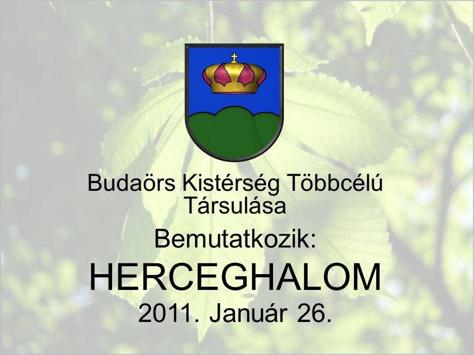 Budaörs Kistérség Többcélú Társulása Bemutatkozik: HERCEGHALOM 2011. Január 26.