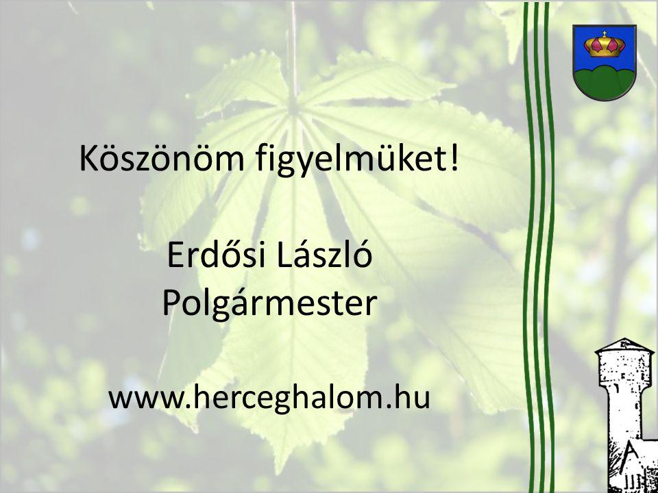 Köszönöm figyelmüket! Erdősi László Polgármester www.herceghalom.hu