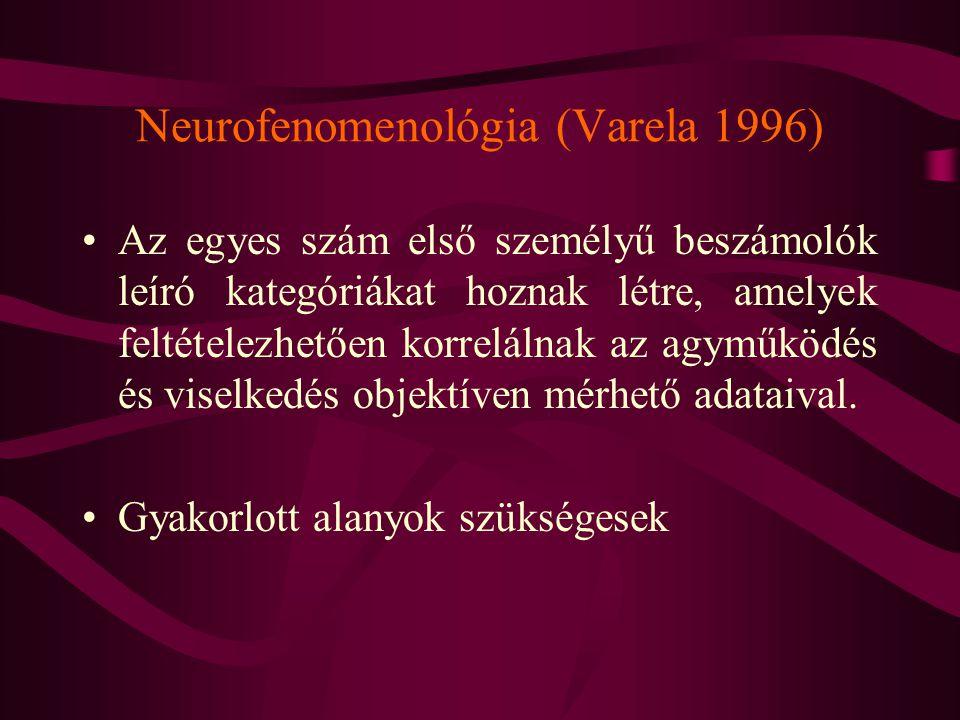 Neurofenomenológia (Varela 1996) Az egyes szám első személyű beszámolók leíró kategóriákat hoznak létre, amelyek feltételezhetően korrelálnak az agymű