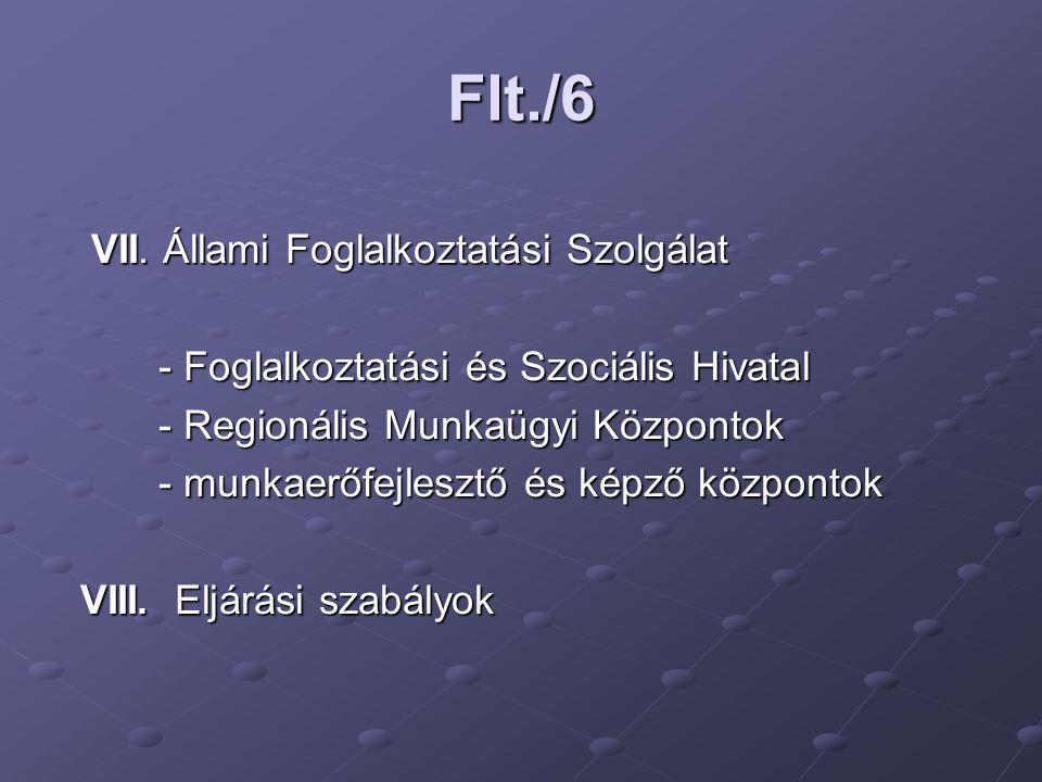 Flt./6 VII.Állami Foglalkoztatási Szolgálat VII.