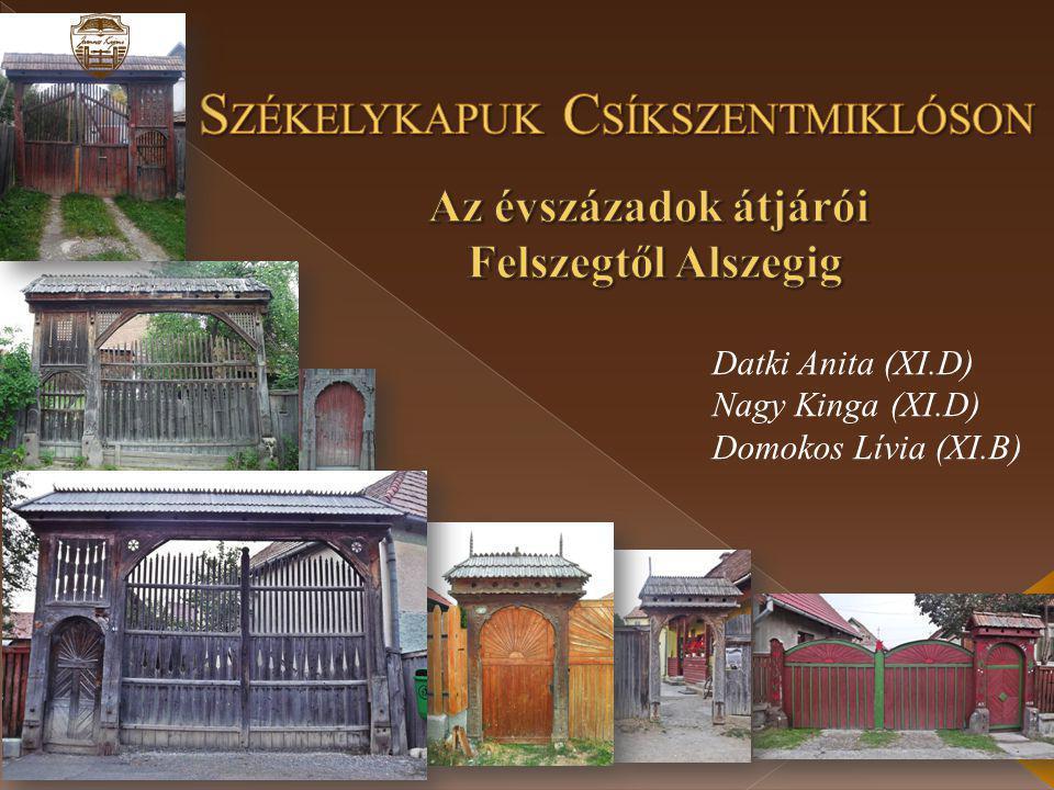 Datki Anita (XI.D) Nagy Kinga (XI.D) Domokos Lívia (XI.B)