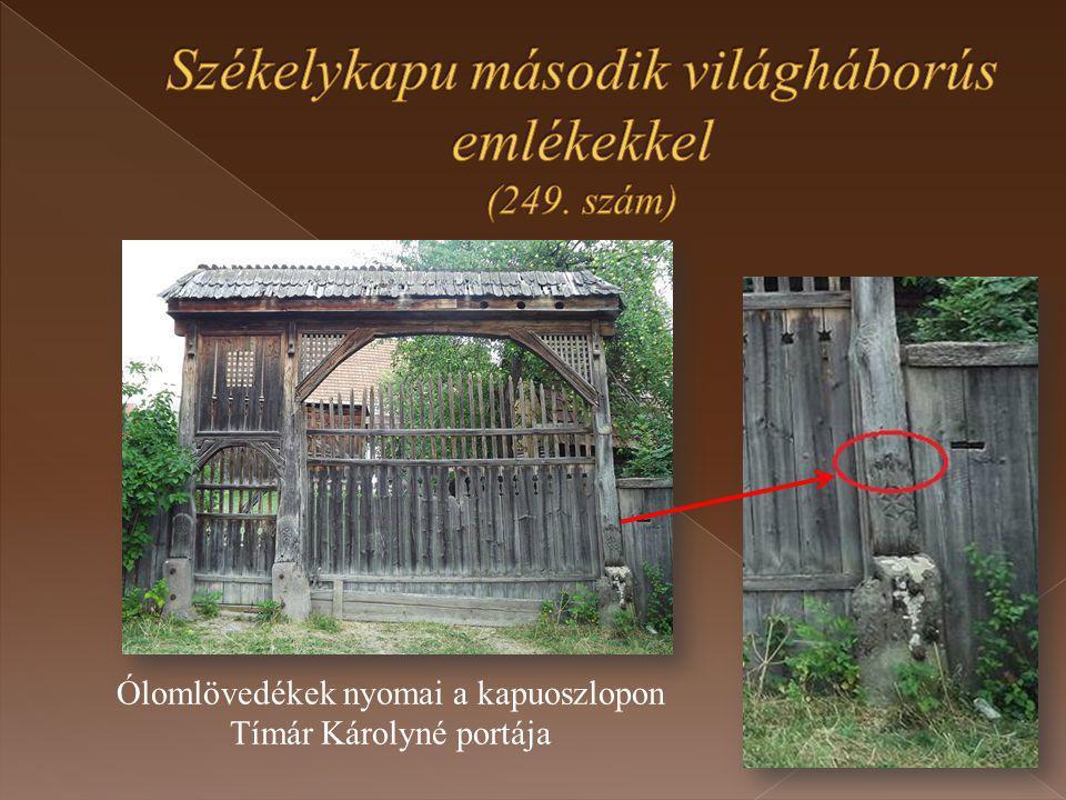 Ólomlövedékek nyomai a kapuoszlopon Tímár Károlyné portája