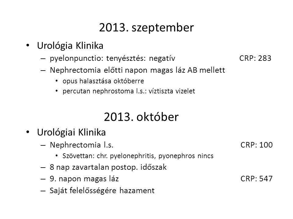 2013. szeptember Urológia Klinika – pyelonpunctio: tenyésztés: negatív CRP: 283 – Nephrectomia előtti napon magas láz AB mellett opus halasztása októb