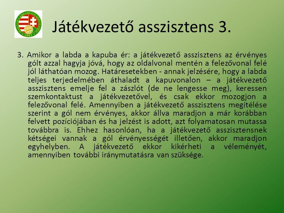 Játékvezető asszisztens 3. 3.