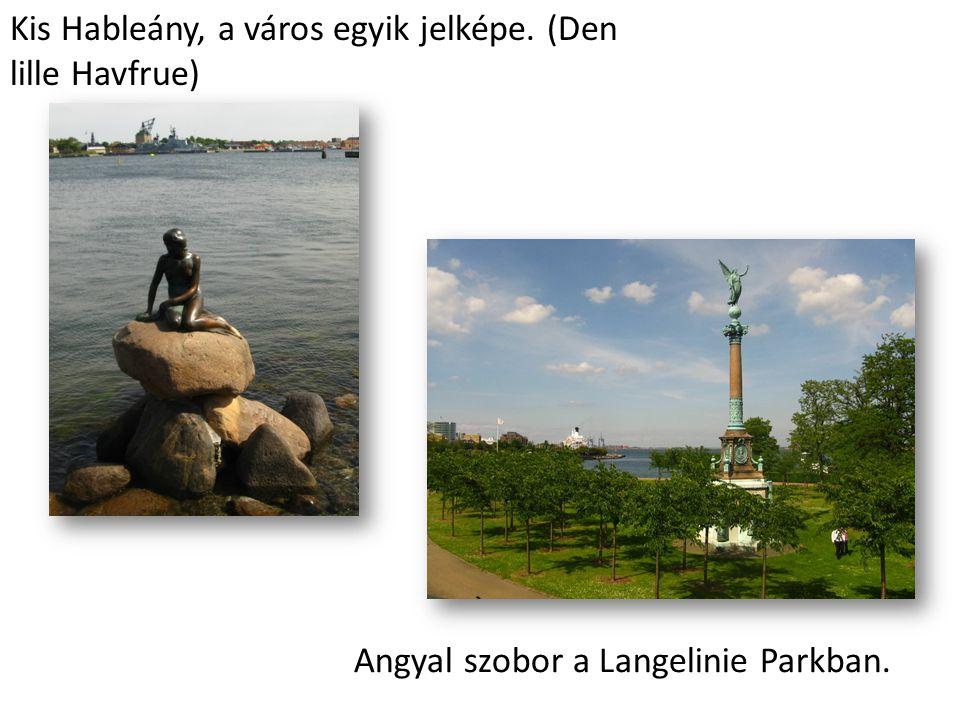 Kis Hableány, a város egyik jelképe. (Den lille Havfrue) Angyal szobor a Langelinie Parkban.