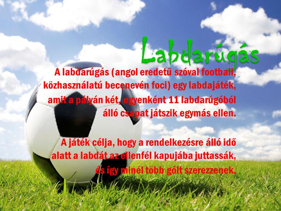 A labdarúgás (angol eredetű szóval football, közhasználatú becenevén foci) egy labdajáték, amit a pályán két, egyenként 11 labdarúgóból álló csapat játszik egymás ellen.