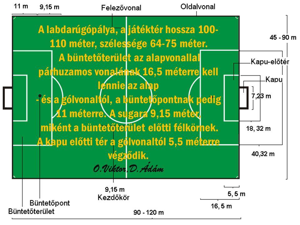 A labdarúgópálya, a játéktér hossza 100- 110 méter, szélessége 64-75 méter.