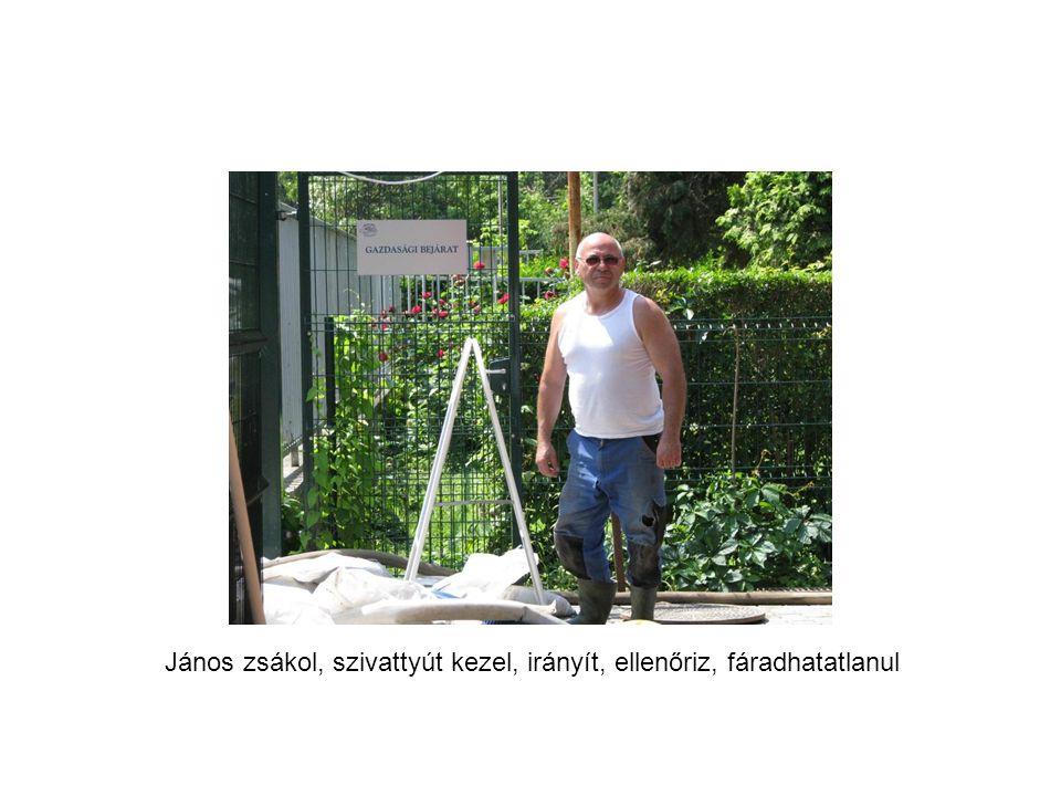 János zsákol, szivattyút kezel, irányít, ellenőriz, fáradhatatlanul