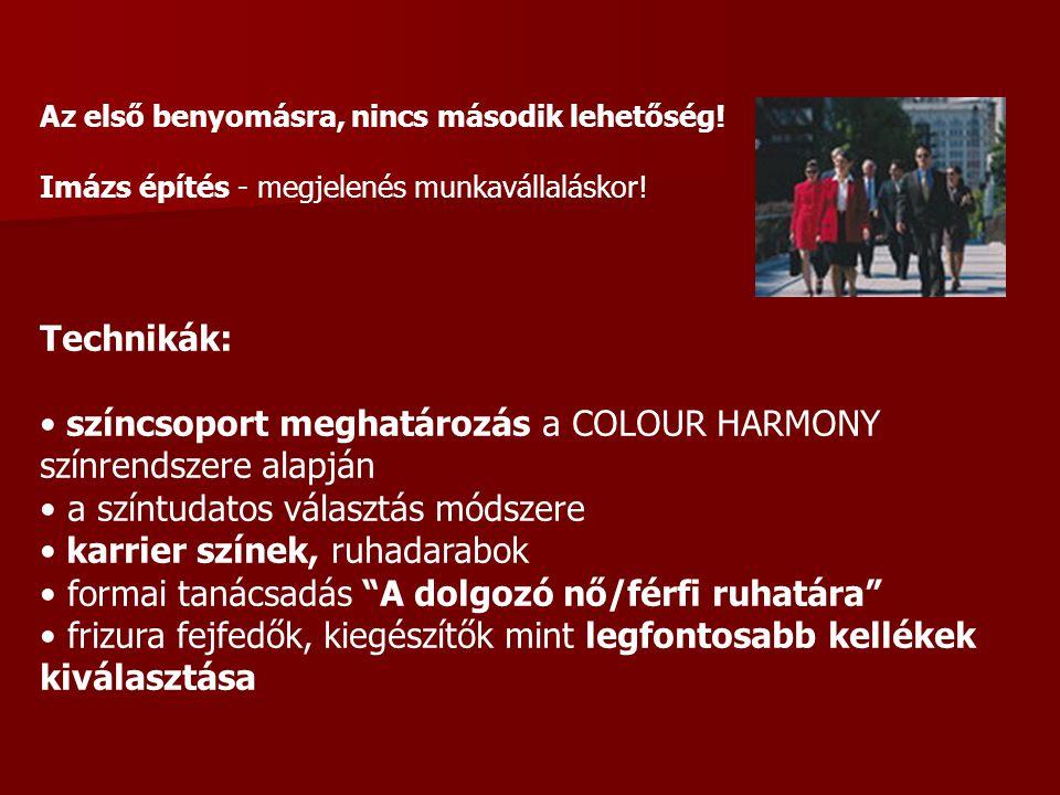 Amit a színek sugároznak Piros: energiát, agresszivitást, erőt és harciasságot sugároz (gyengéknek) Sárga: kreativitást és a döntésképességet fokozza (irigység, fösvénység) Zöld: a természet, a természetesség, az élet és az életvidámság szimbóluma Kék: az erény színe (harmónia, barátság, bizalom, hűség, megbízhatóság) Lila: a kisugárzása nyugtató, de az erőszakkal és a hatalommal társítják Fekete: a gyász színe (távolságtartást, méltóságot és erőt sugároz) Fehér: a fény színe (tökéletesség, ártatlanság, tisztaság, egyszerűség, szerénység) Narancssárga: a biztonság színe (védőruhánál, melegséget sugároz, a szórakozás)