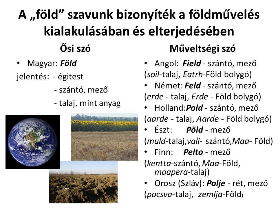 """A """"föld szavunk bizonyíték a földművelés kialakulásában és elterjedésében Ősi szó Magyar: Föld jelentés: - égitest - szántó, mező - talaj, mint anyag Műveltségi szó Angol: Field - szántó, mező (soil-talaj, Eatrh-Föld bolygó) Német: Feld - szántó, mező (erde - talaj, Erde - Föld bolygó) Holland:Pold - szántó, mező (aarde - talaj, Aarde - Föld bolygó) Észt: Pöld - mező (muld-talaj,vali- szántó,Maa- Föld) Finn: Pelto - mező (kentta-szántó, Maa-Föld, maapera-talaj) Orosz (Szláv): Polje - rét, mező (pocsva-talaj, zemlja-Föld )"""