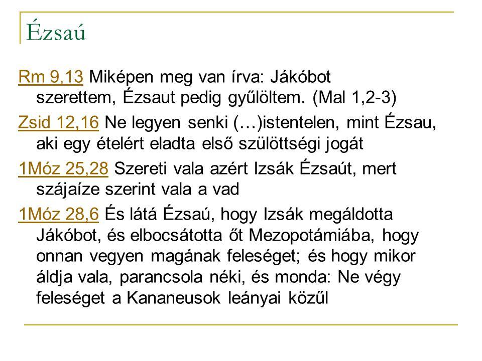 Ézsaú Rm 9,13Rm 9,13 Miképen meg van írva: Jákóbot szerettem, Ézsaut pedig gyűlöltem.