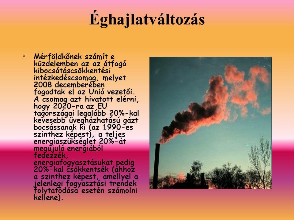 Éghajlatváltozás Mérföldkőnek számít e küzdelemben az az átfogó kibocsátáscsökkentési intézkedéscsomag, melyet 2008 decemberében fogadtak el az Unió vezetői.