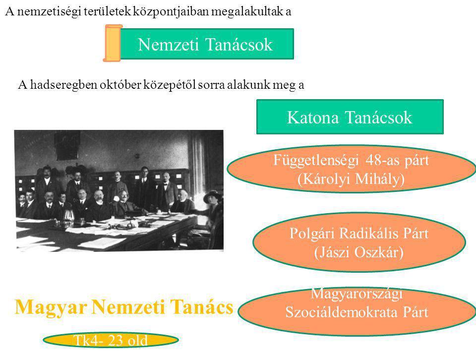 Nemzeti Tanácsok A nemzetiségi területek központjaiban megalakultak a A hadseregben október közepétől sorra alakunk meg a Katona Tanácsok Magyar Nemze