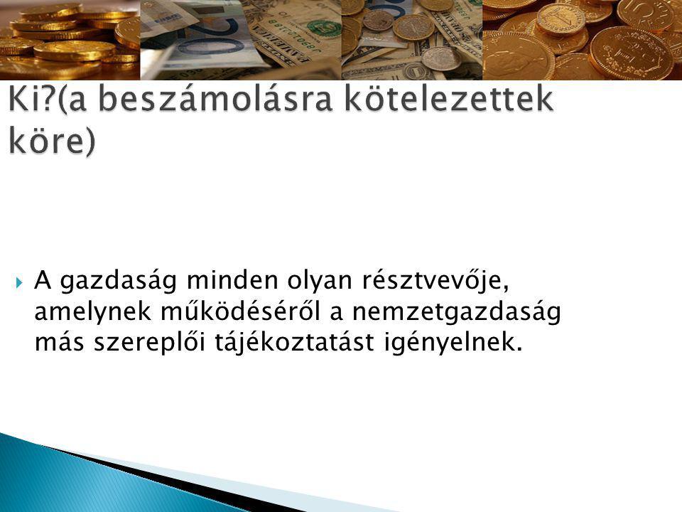  A gazdaság minden olyan résztvevője, amelynek működéséről a nemzetgazdaság más szereplői tájékoztatást igényelnek.